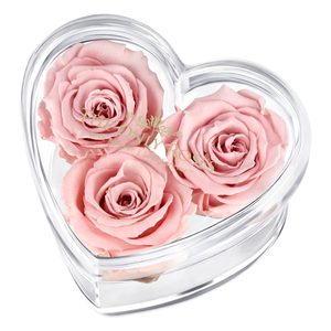 Light Pink Preserved Rose | Acrylic Rose Heart Box