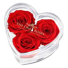 Load image into Gallery viewer, Red Preserved Rose | Acrylic Rose Heart Box