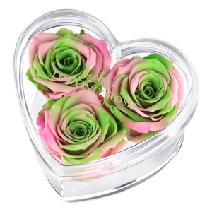 Pink & Green Mix Preserved Rose | Acrylic Rose Heart Box