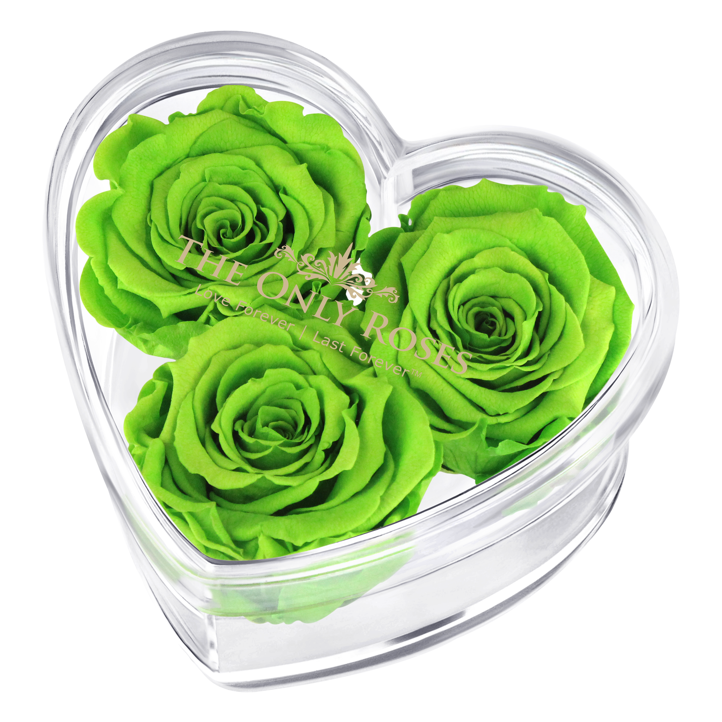 Green Preserved Rose | Acrylic Rose Heart Box