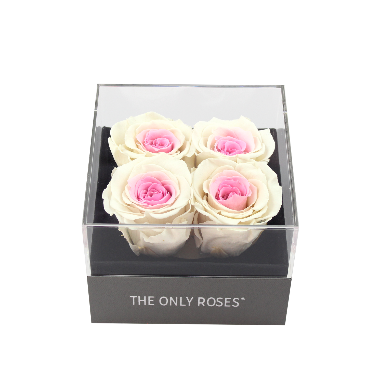 Pink and White Preserved Roses | Small Square Classic Grey Box - The Only Roses