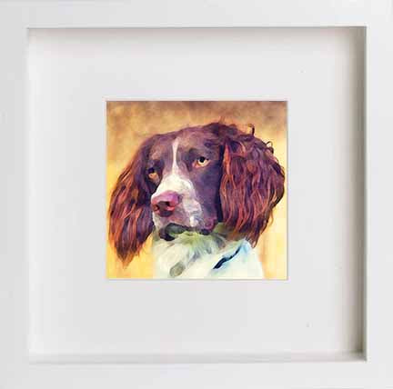 Watercolour English Springer Spaniel 0276