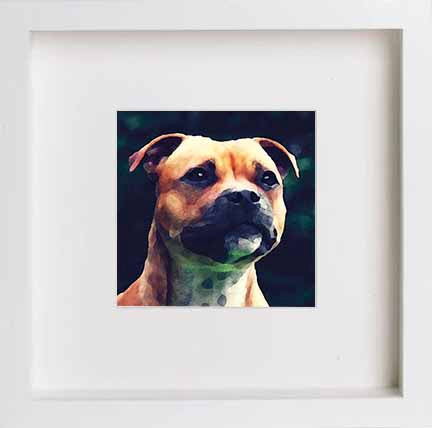 Watercolour Pets Staffordshire Bullterrier 0277