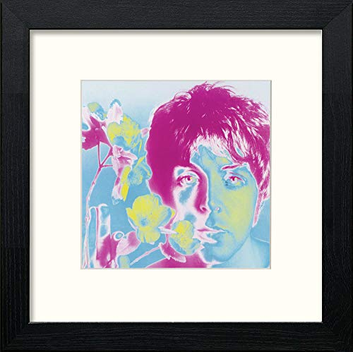 Vintage Paul Mccartney Poster - LUMARTOS