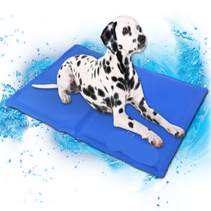 Cool Bed Mat Keep Your Animals Cool