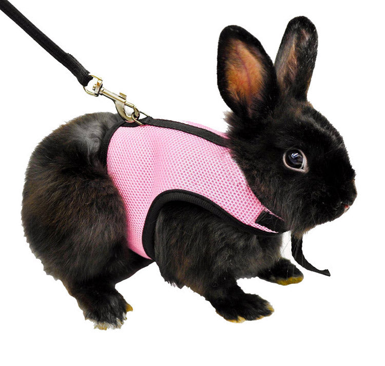 3 Colors Hamster Rabbit Harness And Leash Set