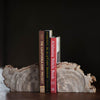 Petrified Wood Bookends LG - Stash Co
