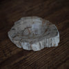 Medium Petrified Wood Dish | Sand