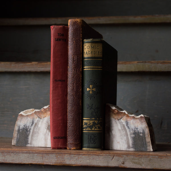 Petrified Wood Bookends - Stash Co