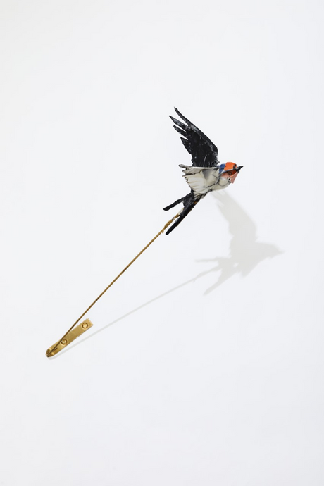 Anna-Wili Highfield, Swallow, 2019 (Online exclusive), $6000 AUD