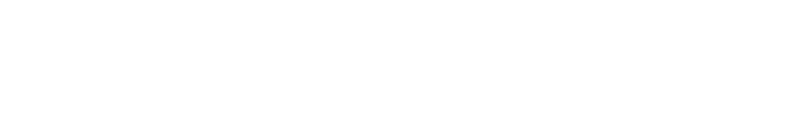 The Strokes Official Store logo