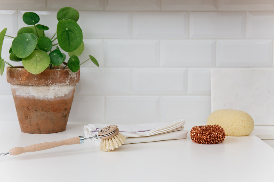 Andree Jardin Traditional Wooden Washing Up Brush