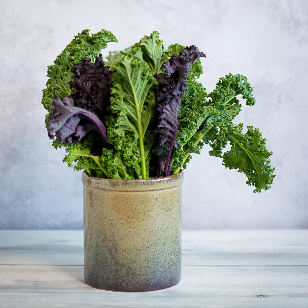 Lagoa portuguese stoneware utensil jar with kale stems - being used as a vase