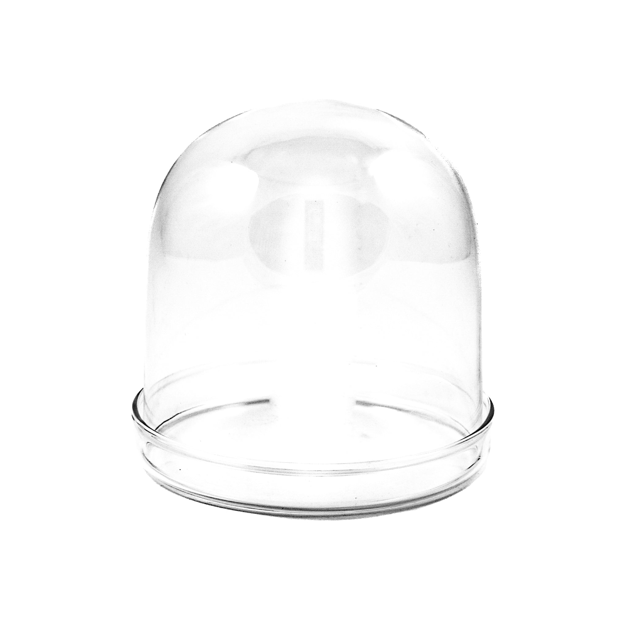 Large Domed Glass Cloche x 2