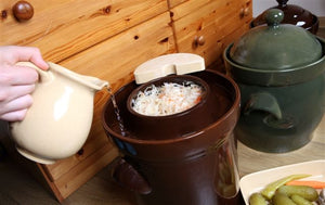 Fermenting Crock Pot with Lid & Stone