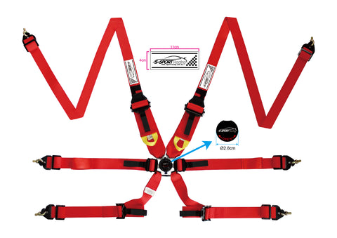 6 Point Racing Harness Endurance Style FIA Approved