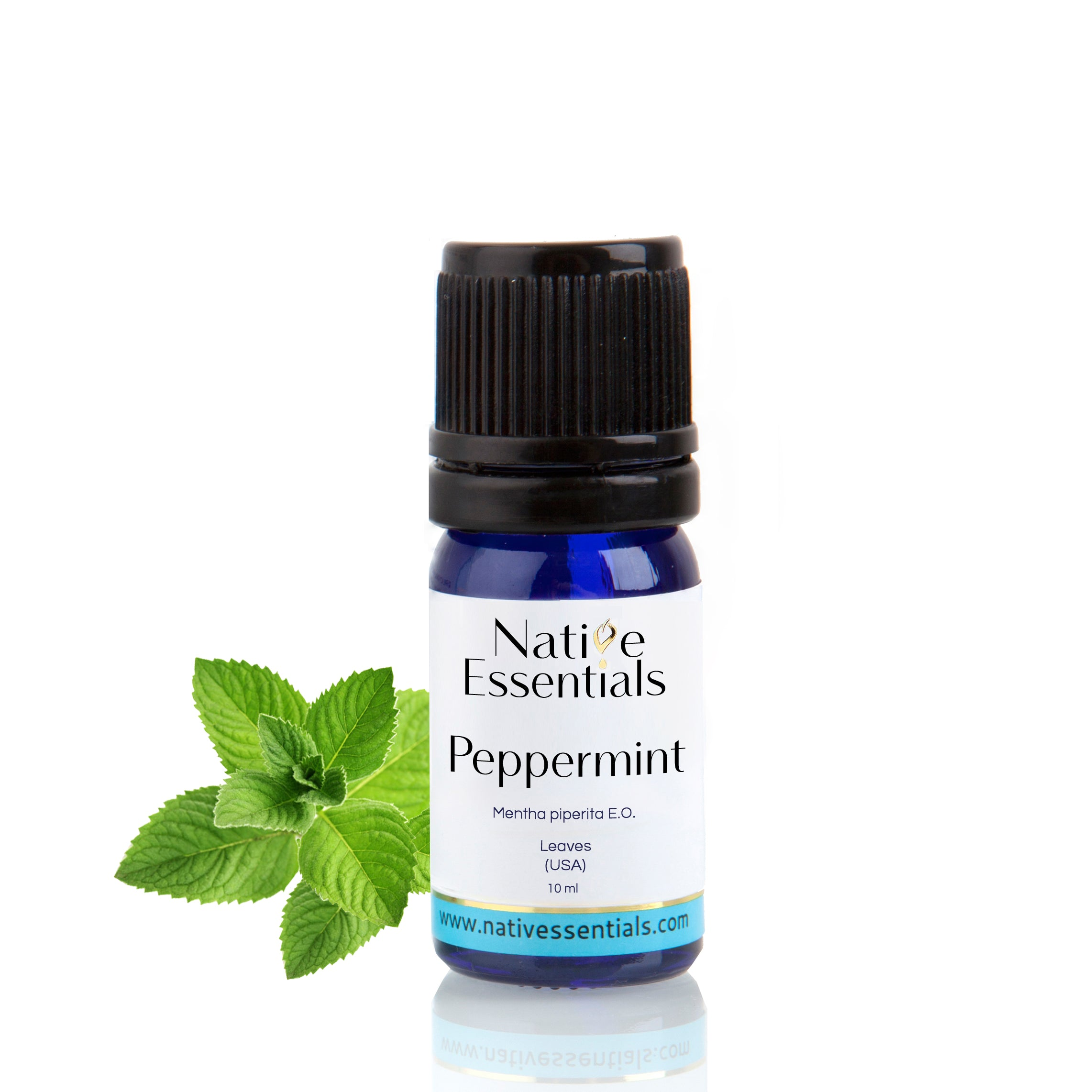 Peppermint Essential Oil (Organic US) - Native Essentials