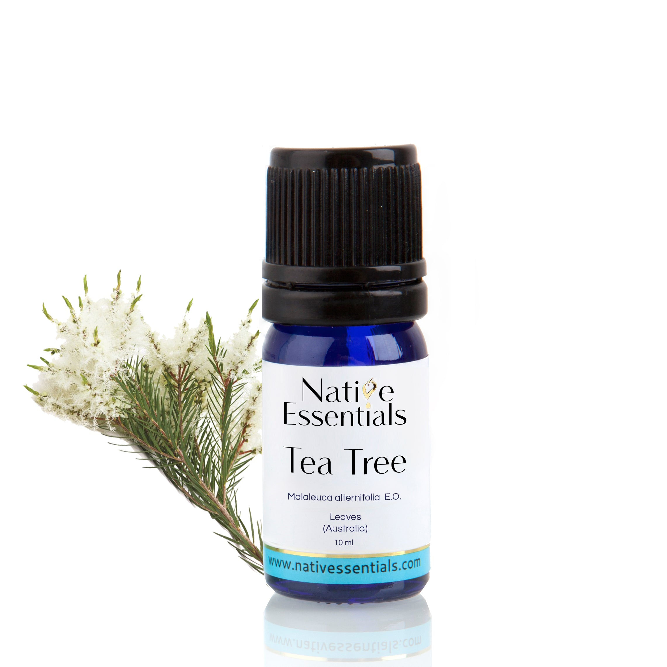 Tea Tree Essential Oil (Organic Australia) - Native Essentials