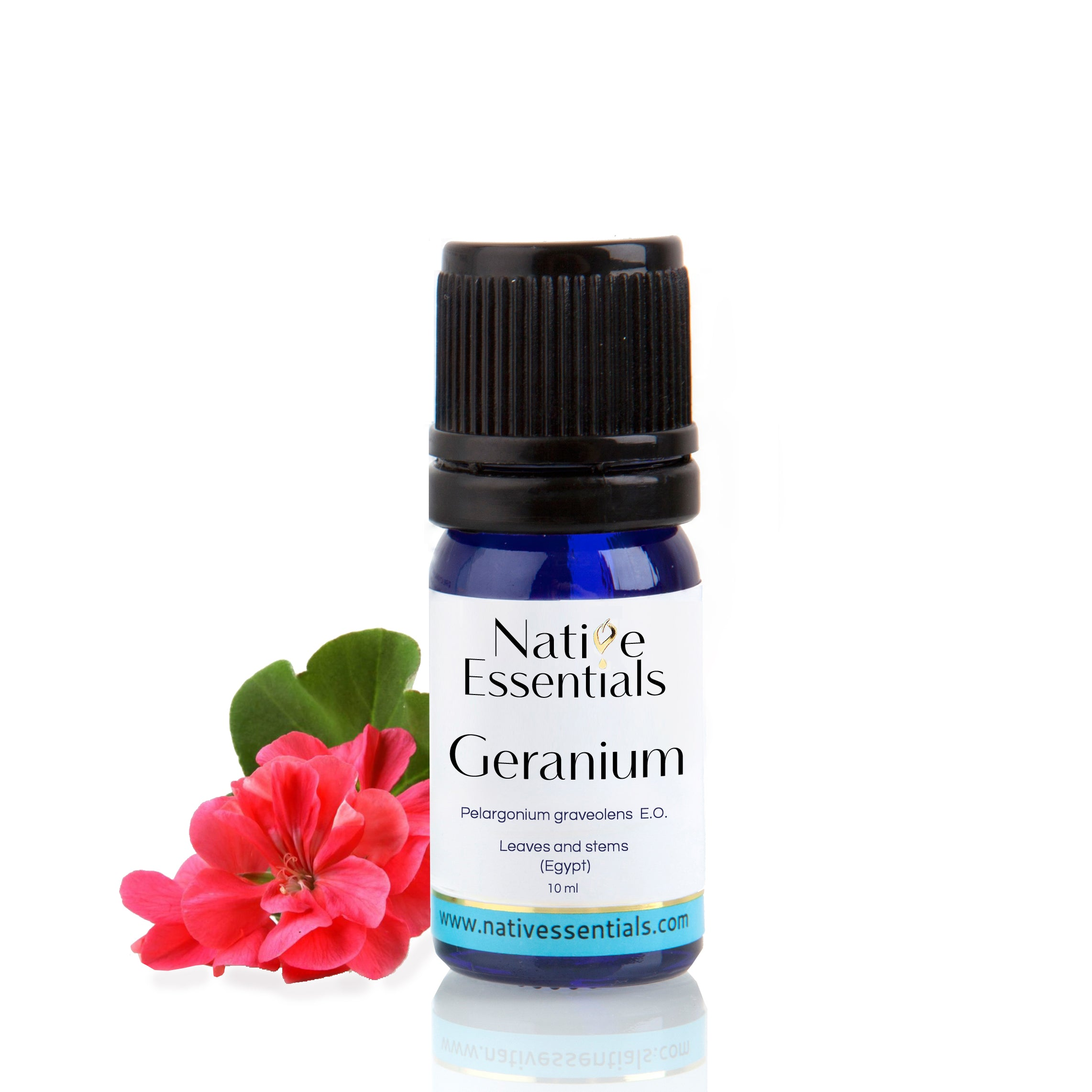Geranium Essential Oil (Organic Egypt) - Native Essentials