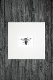 Hand Drawn Bee Print small