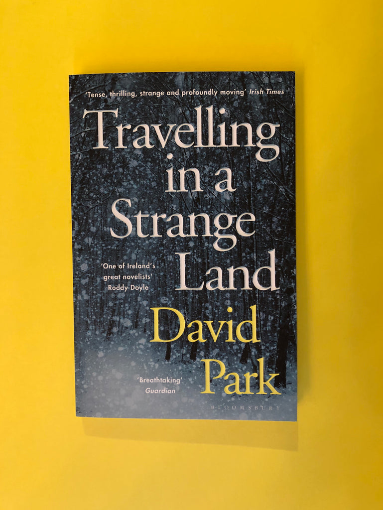 Travelling in a Strange Land, by David Parks ( paperback)