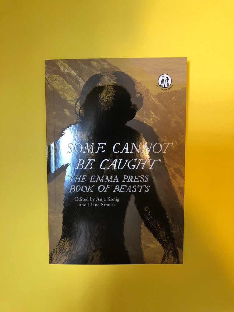 Some Cannot Be Caught ( poetry anthology)