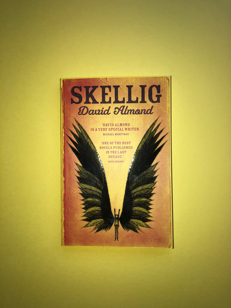 Skellig, by David Almond