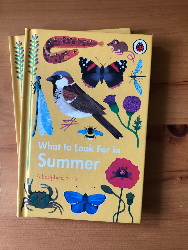 What To Look For in .. Summer( Ladybird series)