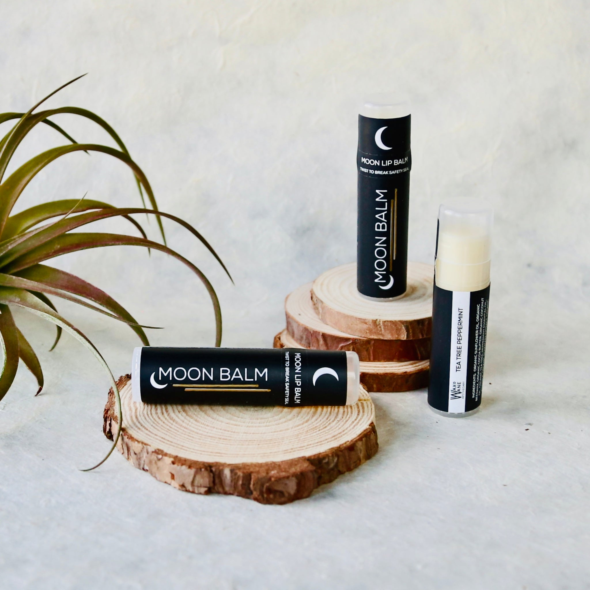 Moon Balm Tea Tree Peppermint (set of two) / lip balm