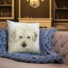 Load image into Gallery viewer, Premium Personalized Illustrated Pet Throw Pillow