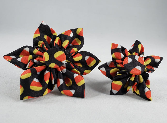Huxley and Kent Candy Corn Pinwheels dog collar accessory