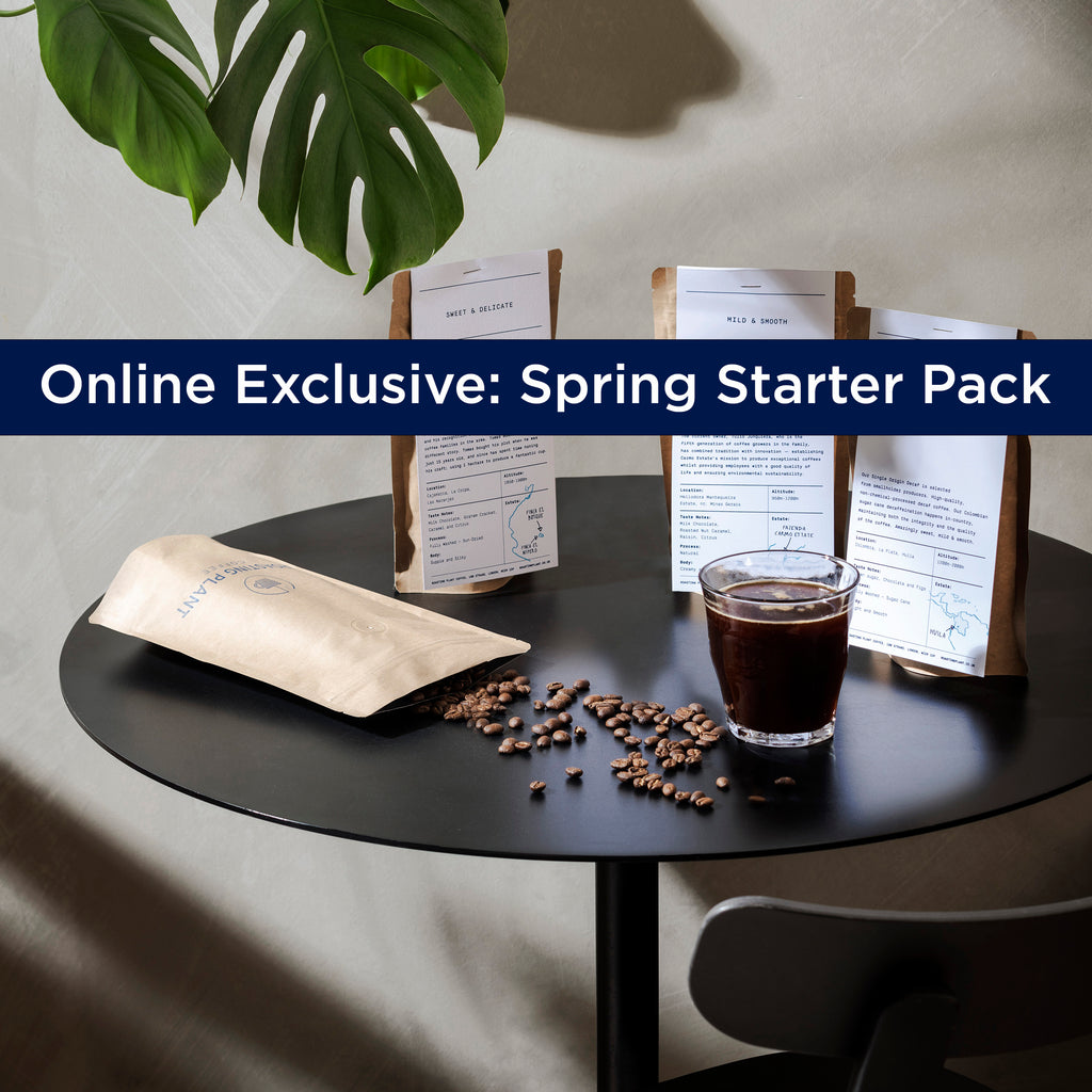 Online Exclusive - Spring Starter Pack
