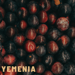 Yemenia Coffee