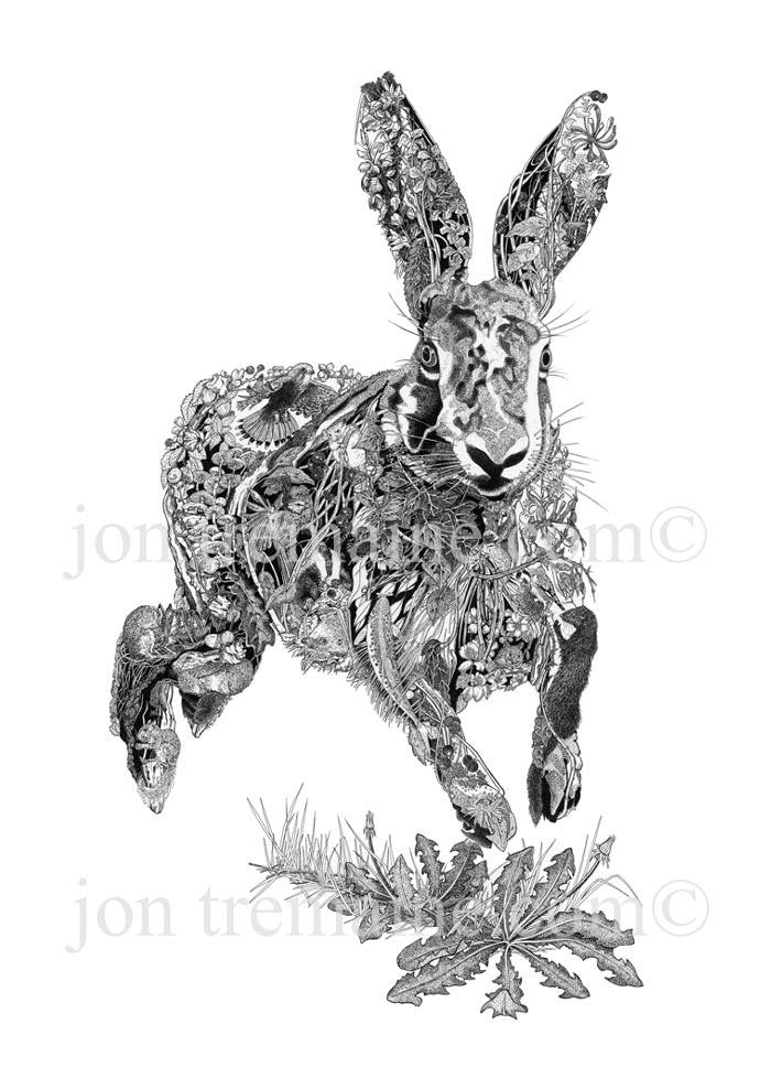 Running Hare - Jon Tremaine - Open Edition