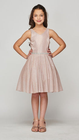 Girls Metallic V Neck Party Dress