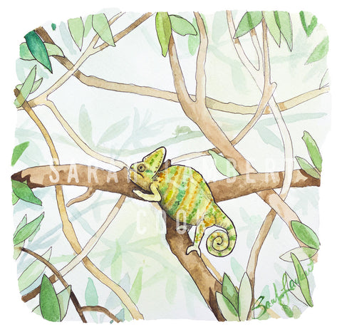 Veiled Chameleon - Printable Art - 100% of proceeds donated to American Refugee Committee