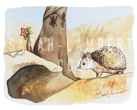 Desert Hedgehog - Printable Art - 100% of Proceeds Donated to American Refugee Committee