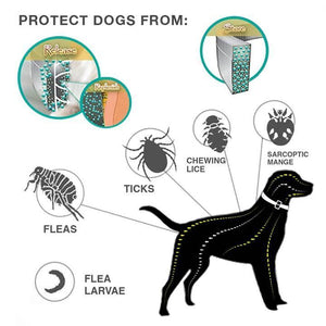 03-22T23:41:10-07:00 *** Flea And Tick Collar For Dogs And Cats