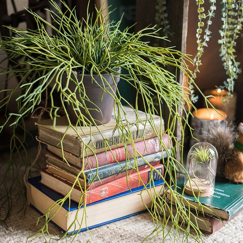 The Best Artificial Plants All Under $7