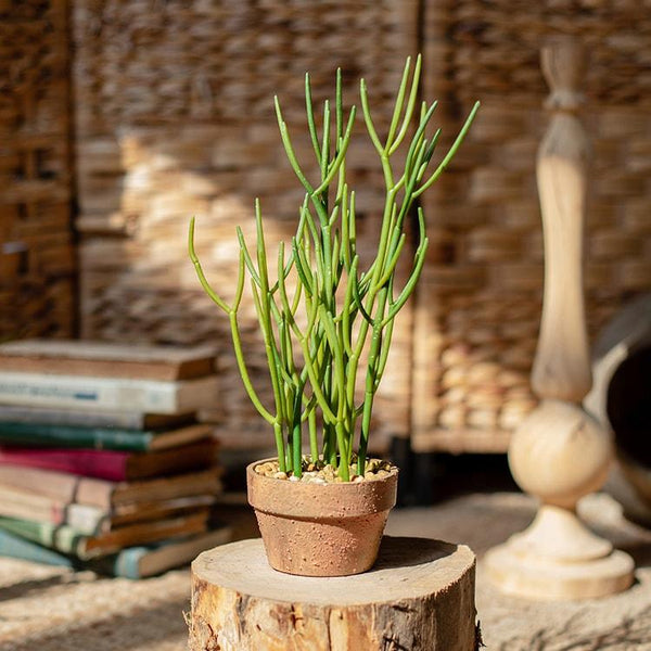 Artificial Potted Plant Pencil Cactus