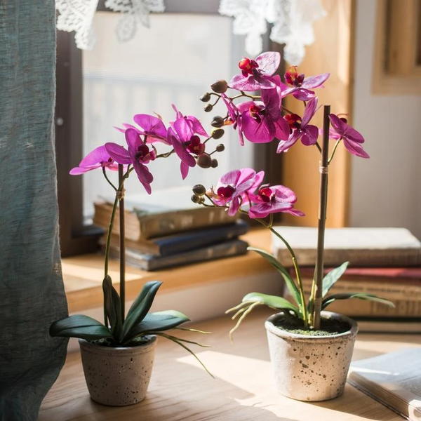 Artificial Purple Orchid