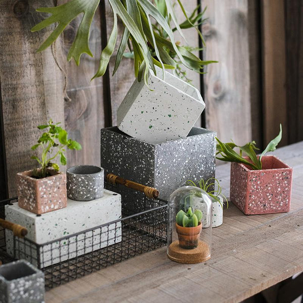 Cement Planter in Various Shape