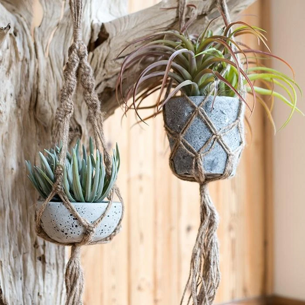 Hemp Rope Plant Hanger with Potted Succulent Plant