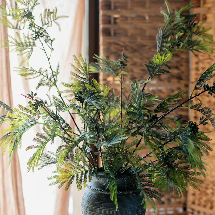 "Artificial Acacia Plant Stem 47"" Tall"