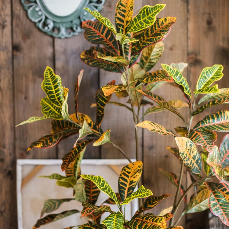 Large Leaf Artificial Croton Tree