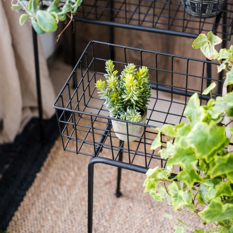 Black Metal Plant Stand Modern Plant Stand
