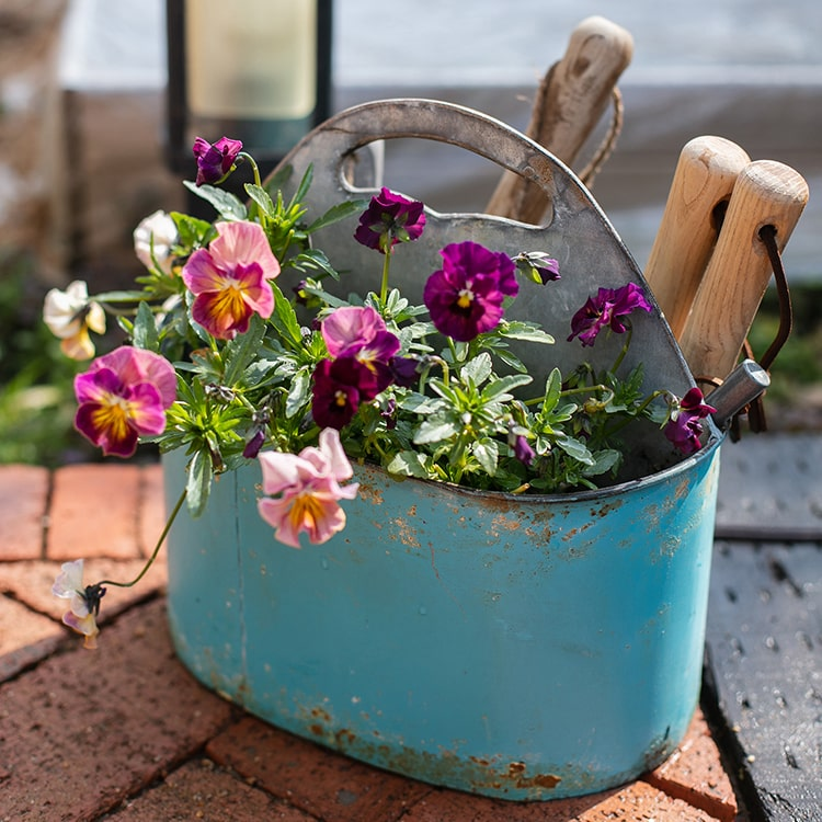 Blue Metal Basket Tool Organizer Flower Garden
