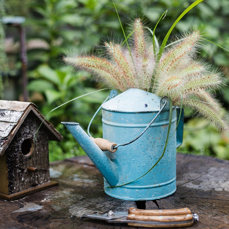 Blue Metal Rustic Watering Can