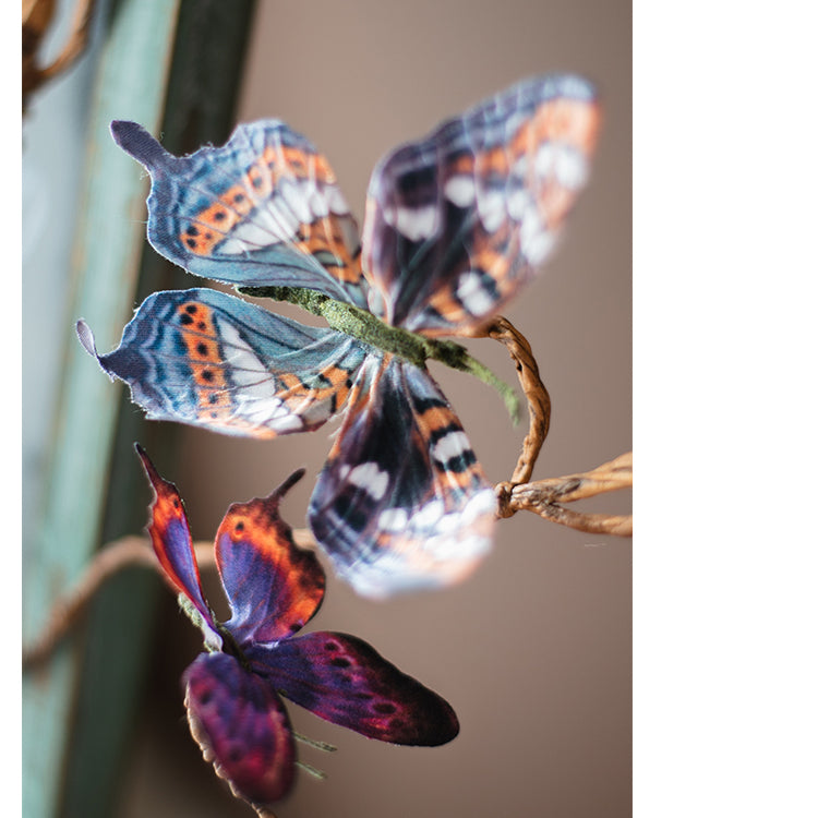Butterfly Clips Randomly Picked Set of 5