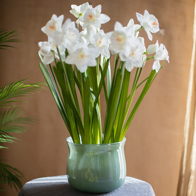 "White Faux Daffodil Flower Stem 19"" Tall"